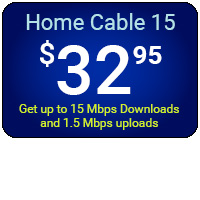 Home Cable 15